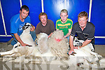 SHEARERS: Tom O'Donnell and Tom Griffin (shearers) getting an helping hand from John Kennedy and Maurice O'Donnell at the Camp Shearing and Dog Trials competition on Sunday in Aid of Kerry Hospice Foundation............