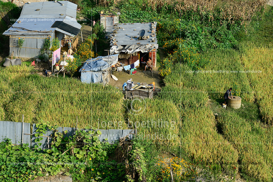 NEPAL Kathmandu, tin shed hut and  paddy fields in suburb / Blechhuette und Reisfelder in einem Vorort