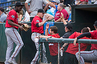 Billings Mustangs center fielder Drew Mount (8) is congratulated by teammates after making a highlight-reel catch during a Pioneer League game against the Ogden Raptors at Lindquist Field on August 17, 2018 in Ogden, Utah. The Billings Mustangs defeated the Ogden Raptors by a score of 6-3. (Zachary Lucy/Four Seam Images)