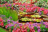 Tom Mackie, FLOWERS, photos, Butchart Gardens, Victoria, Vancouver Island, British Columbia, Canada, GBTM070320-1,#F# Garten, jardín