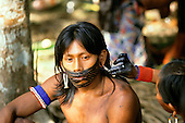 Altamira, Brazil. Kayapo woman applying intricate face paint to her man using genipapu and charcoal on a thin stick.