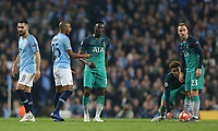 Manchester City's Fernandinho reacts<br /> <br /> Photographer Rich Linley/CameraSport<br /> <br /> UEFA Champions League - Quarter-finals 2nd Leg - Manchester City v Tottenham Hotspur - Wednesday April 17th 2019 - The Etihad - Manchester<br />  <br /> World Copyright © 2018 CameraSport. All rights reserved. 43 Linden Ave. Countesthorpe. Leicester. England. LE8 5PG - Tel: +44 (0) 116 277 4147 - admin@camerasport.com - www.camerasport.com