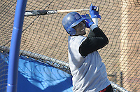 Spartanburg Methodist College graduate Orlando Hudson, a Major League All-Star and Gold Glove winner, takes batting practice with the SMC baseball team Jan. 19, 2010. Hudson played with the Los Angeles Dodgers in 2009. Hudson was later signed by the Minnesota Twins on Feb. 4. Photo by: Tom Priddy/Four Seam Images