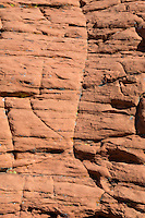 Red Rock Canyon, Nevada.  Red Sandstone showing  Cross-bedding from ancient Sand Dunes.