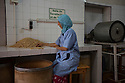 Morocco - Tidzi - Amina Hammoush, 40, selects the best nuts at the cooperative before pouring them into the grinding machine.