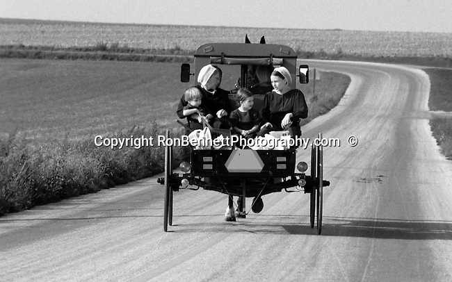 Amish kids ride in buggy Pennsylvania, amish, kids, buggy, Pennsylvania, Black and White Photographs, Black & White Photo's, B&W Photographs,  B&W, Black and White, Fine Art Photography, photography, Black and White Pictures, Fine Art Photography by Ron Bennett, Fine Art, Fine Art photography, Art Photography, Copyright RonBennettPhotography.com ©