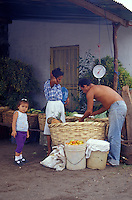 Woman shopping for fruit and vegetables in Altagracia, Isla de Ometepe, Nicaragua