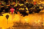 Ochre Wall Silk Lantern 01 - Red silk lantern on an ochre wall, late afternoon, Hoi An, Viet Nam