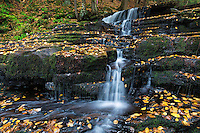 Autumn waterfall at Beecher Creek, Edinburg, New York, USA.
