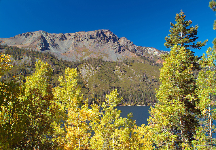 Fall Colors - Mt Tallac