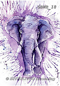 Simon, REALISTIC ANIMALS, REALISTISCHE TIERE, ANIMALES REALISTICOS, paintings+++++KatherineW_SplatterElephant,GBWR18,#a#, EVERYDAY