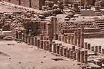 The columns of the East Exedra of the Great Temple in the ruins of the Nabataean city of Petra in the Hashemite Kingdom of Jordan.  Petra Archeological Park is a Jordanian National Park and a UNESCO World Heritage Site.