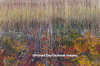 64776-01509 Pond and fall color reflection Alger County Upper Peninsula Michigan