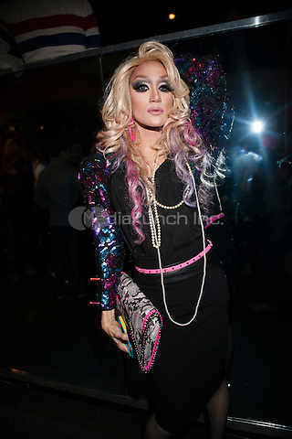 NEW YORK, NY - JANUARY 25: 'Rupaul's Drag Race' Season 5 Premiere Party at XL Nightclub on January 25, 2013 in New York City.  © Diego Corredor/MediaPunch Inc.