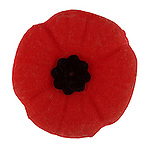 Legion remembrance poppy<br />