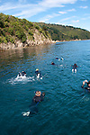New Zealand South Island, swimming with dolphins with Dolphin Watch Ecotours on Queen Charlotte Sound out of Picton. Photo copyright  Lee Foster.