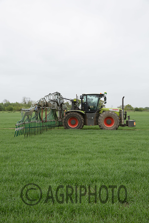 Contractors applying liquid anaerobic digestate tp Spring Barley <br /> Picture Tim Scrivener 07850 303986<br /> &hellip;.covering agriculture in the UK&hellip;.