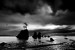 Seastacks, Garibaldi Beach, Tillamook Bay, Oregon