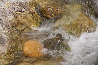 Sooke River <br />Sooke Potholes Provincial Park<br />British Columbia<br />Canada