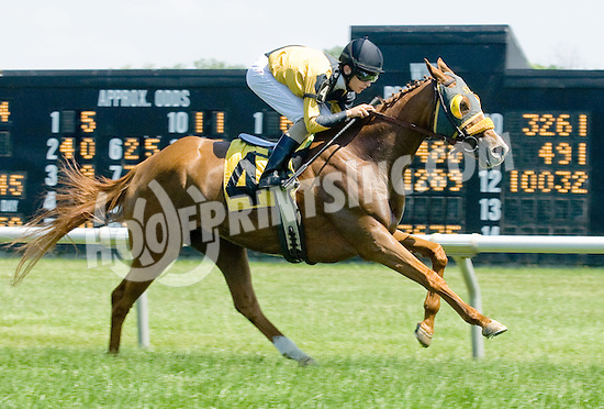 Maryland Mystique winning at Delaware Park on 5/31/12