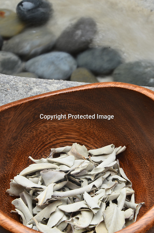 Stock photos of eucalyptus in a bowl