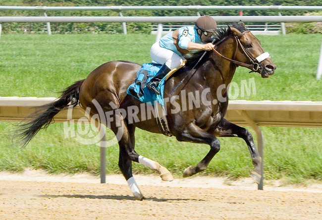 Birdway winning at Delaware Park on 5/24/12