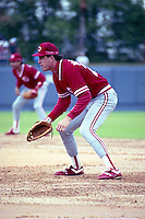Cincinnati Reds Hal Morris during spring training circa 1991 at Chain of Lakes Park in Winter Haven, Florida.  (MJA/Four Seam Images)