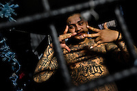 "A member of the 18th Street gang (M-18) shows a hand sign, representing his gang, in a cell at the detention center in San Salvador, El Salvador, 20 February 2014. Although the country's two major gangs reached a truce in 2012, the police holding cells currently house more than 3000 inmates, five times more than the official built capacity. Partly because the ordinary Mara gang members did not break with their criminal activities (extortion, street-level distribution of drugs, etc.), partly because Salvadorean police still applies controversial anti-gang law which allows to detain almost anyone for ""suspicion of gang membership"". Accused young men are held in police detention centers where up to 25 inmates may share a cell of five-by-five metres. Here, in the dark overcrowded cages, under harsh and life-threatening conditions, suspected gang members wait long months, sometimes years, for trial or for to be transported to a regular prison."