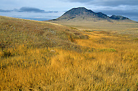 Bear Butte State Park, autumn prairie near Sturgis, South Dakota, AGPix_0270.