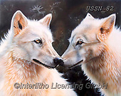 Sandi, REALISTIC ANIMALS, REALISTISCHE TIERE, ANIMALES REALISTICOS, paintings+++++WhiteMagic,USSN82,#a#, EVERYDAY ,wolf,wolves ,wolf,wolves ,puzzles