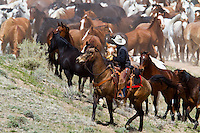 Photos and Pictures of Cowboys riding roping ranching rounding up horses Cowboys working and playing. Cowboy Cowboy Photo Cowboy, Cowboy and Cowgirl photographs of western ranches working with horses and cattle by western cowboy photographer Jess Lee. Photographing ranches big and small in Wyoming,Montana,Idaho,Oregon,Colorado,Nevada,Arizona,Utah,New Mexico.