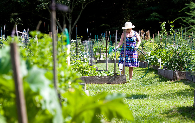 SOUTHBURY, CT-071817JS01--Heritage village resident Cathy McLaughlan waters her garden plot at The River Garden in Southbury on Tuesday. The garden provides residents with a plot where they can grow the plants or flowers they want. McLaughlan picked some cucumbers and some green tomatoes. Having lived in the south for some time, she loves fried green tomatoes.  <br /> Jim Shannon Republican-American