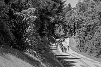 descending peloton<br /> <br /> Stage 6: Le parc des oiseaux/Villars-Les-Dombes &rsaquo; La Motte-Servolex (147km)<br /> 69th Crit&eacute;rium du Dauphin&eacute; 2017