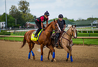 LOUISVILLE, KY - MAY 02: Justify jogs to the gate with Humberto Gomez up at Churchill Downs on May 2, 2018 in Louisville, Kentucky. (Photo by Alex Evers/Eclipse Sportswire/Getty Images)