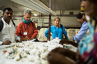 Fairtrade personnel watch as women separate impurities from raw cotton by hand in the Blow Room of the Pratibha vertically integrated garment unit in Indore, Madhya Pradesh, India on 11 November 2014. Photo by Suzanne Lee for Fairtrade