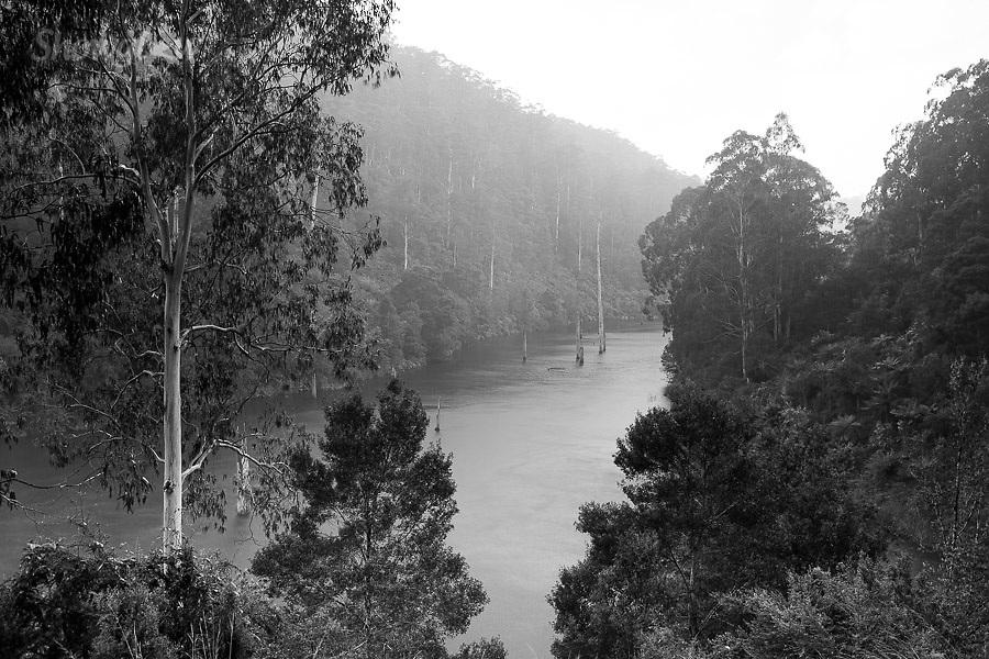 Image Ref: CA597<br /> Location: Lake Elizabeth, Forrest<br /> Date of Shot: 20.10.18