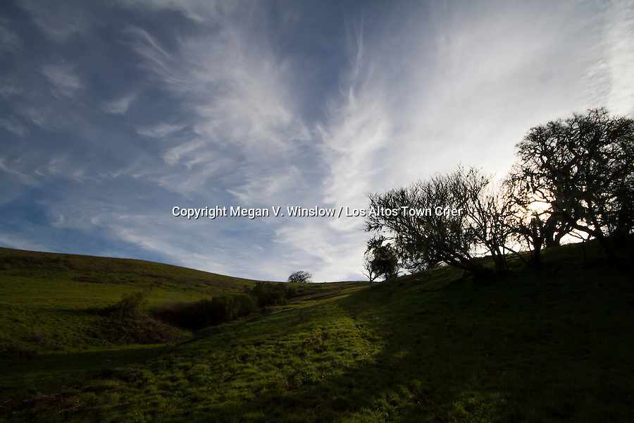 Byrne Preserve, Los Altos Hills