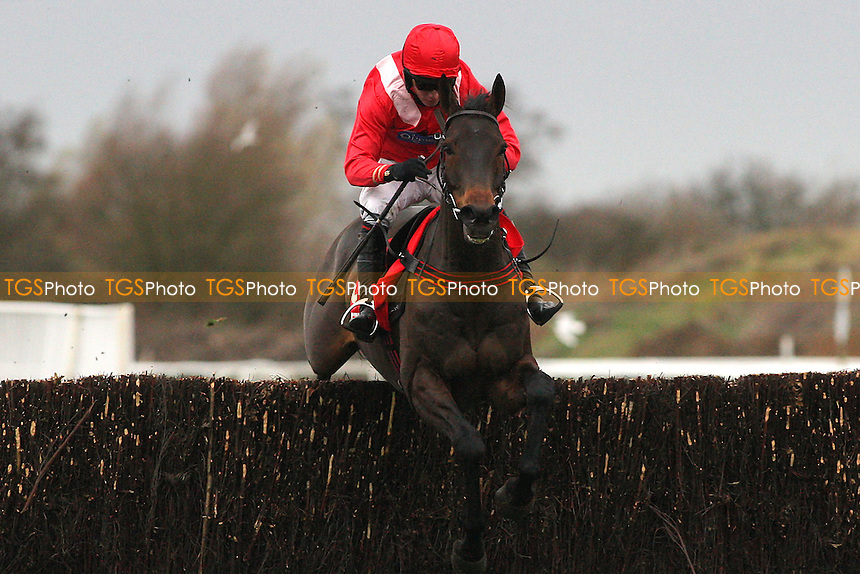 Gauvain ridden by Noel Fehily jumps the last and goes on to win the Betfred Peterborough Chase at Huntingdon Racecourse, Brampton, Cambridgeshire - 08/12/11 - MANDATORY CREDIT: Gavin Ellis/TGSPHOTO - Self billing applies where appropriate - 0845 094 6026 - contact@tgsphoto.co.uk - NO UNPAID USE.
