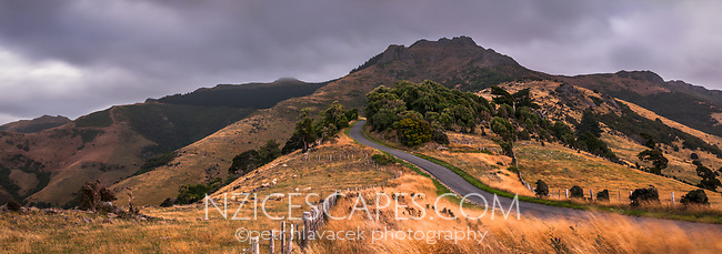 Lighthouse Road near Akaroa with Brasenose and Flag Peak (809m) of Banks Peninsula at twilight, Banks Peninsula, Canterbury, South Island, New Zealand