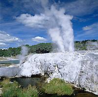 New Zealand, North Island, Rotorua - Whakarewarewa: Pohutu Geyser | Neuseeland, Nordinsel, Rotorua - Whakarewarewa: Pohutu Geysir