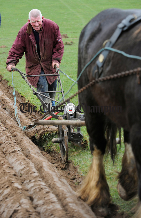 Tom Barrett of Kerry competing in the Clare Ploughing Association's county championships at Newmarket On Fergus. Photograph by John Kelly.