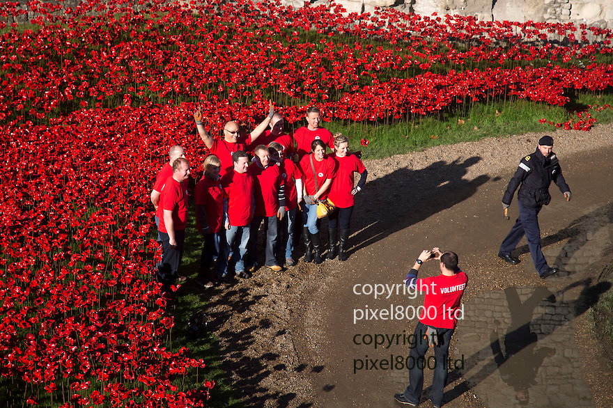 Pic shows: Huge crowds again today at the Blood Swept Lands and Seas of Red<br /> Poppy installation at the Tower of London with just days to  go before it is due to be removed.<br /> <br /> volunteers pose proudly for a photo<br /> <br /> <br /> <br /> Pic by Gavin Rodgers/Pixel 8000 Ltd
