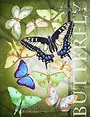 Randy, STILL LIFE STILLLEBEN, NATURALEZA MORTA, paintings+++++Butterflies-watercolor,USRW20,#i#