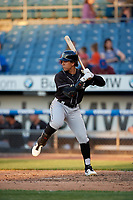 Charlotte Knights Jon Jay (3) bats during an International League game against the Syracuse Mets on June 11, 2019 at NBT Bank Stadium in Syracuse, New York.  Syracuse defeated Charlotte 15-8.  (Mike Janes/Four Seam Images)
