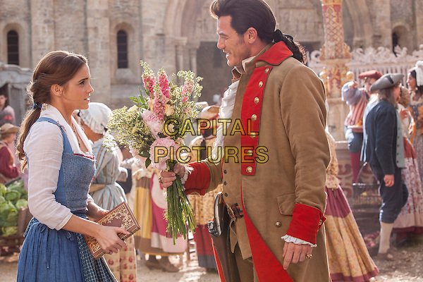 Beauty and the Beast (2017)   <br /> Gaston (Luke Evans) is relentless in his pursuit of Belle (Emma Watson)  <br /> *Filmstill - Editorial Use Only*<br /> CAP/KFS<br /> Image supplied by Capital Pictures