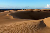 Spain, Gran Canaria, Maspalomas: Sand dunes | Spanien, Gran Canaria, Maspalomas: Sandduenen