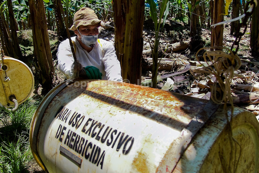 A Costa Rican worker pushing a barrel of chemicals used for maintenance of plants on the banana plantation near Puerto Limon, Costa Rica, 2 September 2004. Eighty percent of the exported bananas in the world are grown in Latin America. Local farms have no other alternative than to sell for a price offered by the multinational company. When working conditions and ecology is in question, the corporations do not have any responsibility as they do not own plantations. Local governments in the attempt of organizing banana export provide low duty taxes on export, they try to eliminate social and enviromental politics to attract the big companies to their countries.