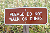 please do not walk on dunes