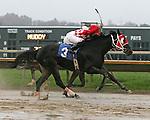 Parx Racing Win Photos 11-2011