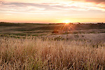 Idaho, Eastern, Driggs, fields under an autumn sunset.